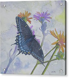Acrylic Print featuring the painting Butterly by Robert Decker