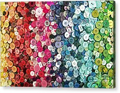 Button Button Acrylic Print by Catherine MacBride