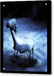 Acrylic Print featuring the photograph By The Light Of The Moon by Susanne Still