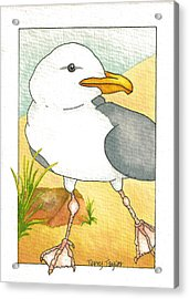 C. Gull Acrylic Print
