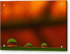 C Ribet Orbscape Three Perceptions Acrylic Print by C Ribet
