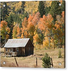 Cabin In Autumn Acrylic Print
