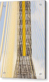Cables And Tower Of Cable Stay Bridge Acrylic Print by Jeremy Woodhouse