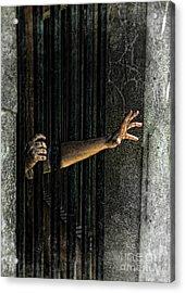 Caged 3 Acrylic Print by Jill Battaglia