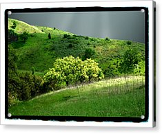 Calabasas Meadow After The Storm Acrylic Print by Noah Brooks