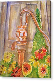 Calico Water Pump Acrylic Print