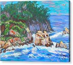 California Coast Acrylic Print by Carolyn Donnell