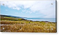 California Pacific Coast Highway - Forever Summer  Acrylic Print by Artist and Photographer Laura Wrede