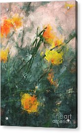 California Poppies Acrylic Print by Julie Lueders