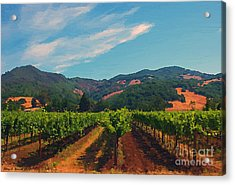 California Vineyard Acrylic Print