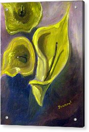 Acrylic Print featuring the painting Calla Lilies by Raymond Doward