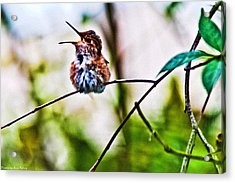 Calling Mama Acrylic Print by Ronald Talley