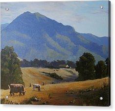 Cambewarra Mountain Acrylic Print