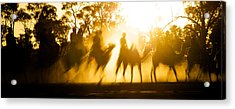 Camels Walking Along Dry River Bed Acrylic Print by Brooke Whatnall