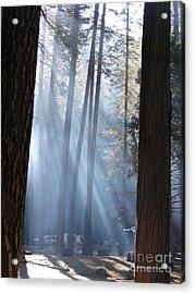 Campfire Smoke Through The Trees Acrylic Print
