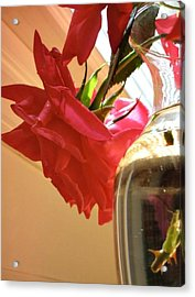Candy Acrylic Print by Debbie Sikes
