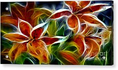 Candy Lily Fractal  Acrylic Print by Peter Piatt