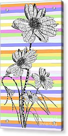 Candy Stripes Happy Flowers Juvenile Licensing Acrylic Print by Anahi DeCanio