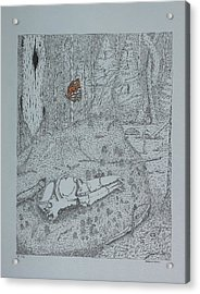 Acrylic Print featuring the drawing Canine Skull And Butterfly by Daniel Reed