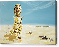 Canis Lupus Desertorum - Der Wuestenwolf Acrylic Print by Florian Divi
