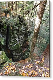 Cantwell Cliffs Acrylic Print by Gerald Strine