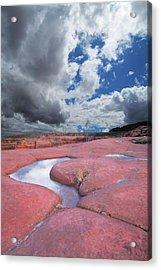 Canyon Pools Acrylic Print by Ric Soulen