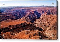 Canyonlands II Acrylic Print by Robert Bales