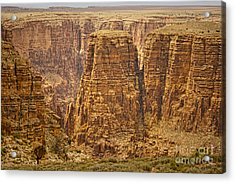 Canyons  Acrylic Print by James BO  Insogna