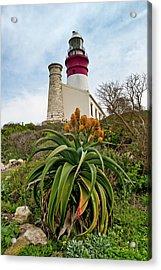 Cape Agulhas  Acrylic Print by G Wigler