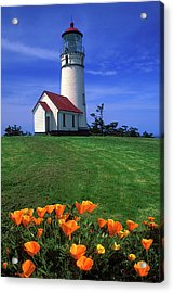 Cape Blanco Lighthouse Oregon Acrylic Print by Dave Mills