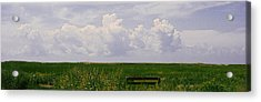 Acrylic Print featuring the photograph Cape Marsh by Michael Friedman