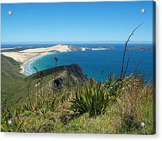 Acrylic Print featuring the photograph Cape Reinga - North Island by Peter Mooyman
