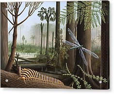 Carboniferous Insects, Artwork Acrylic Print by Richard Bizley