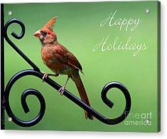 Cardinal Holiday Card Acrylic Print by Sabrina L Ryan