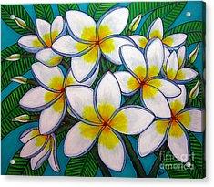 Caribbean Gems Acrylic Print by Lisa  Lorenz