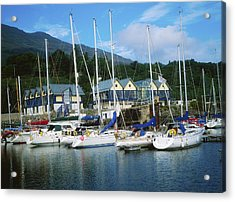 Carlingford Marina, Carlingford, County Acrylic Print