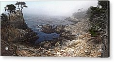 Carmel California - Lone Pine Acrylic Print by Gregory Dyer