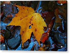 Carolina Blue Reflections Acrylic Print by Christine Annas