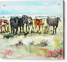 Acrylic Print featuring the painting Carol's Cows by Tom Riggs