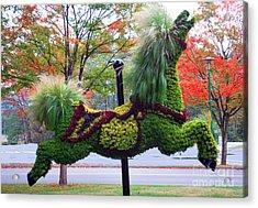 Carousel Horse  A Acrylic Print