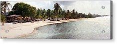Carribean Shore Acrylic Print