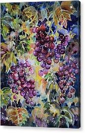 Cascade Acrylic Print by Ann  Nicholson
