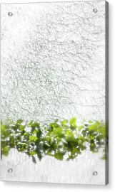 Acrylic Print featuring the photograph Cascade by Richard Piper