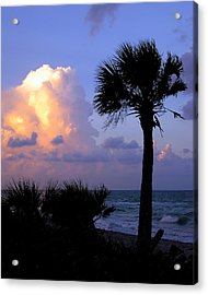 Casperson Beach Sunrise With Palm Acrylic Print