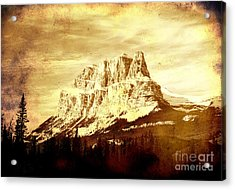 Castle Mountain Acrylic Print by Alyce Taylor