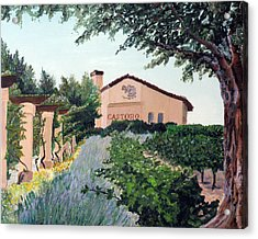 Castoro Winery Acrylic Print by Barbara Willey