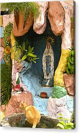 Acrylic Print featuring the photograph Cat At The Grotto by Victoria Lakes