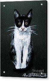 Cat I Acrylic Print by Mona Edulesco