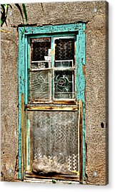 Cat In The Window Acrylic Print by David Patterson