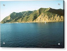 Acrylic Print featuring the photograph Catalina In The Morning by Sheila Silverstein